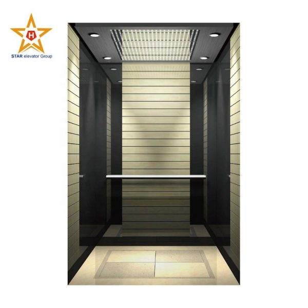VVVF drive small home elevator lift with Monarch control system